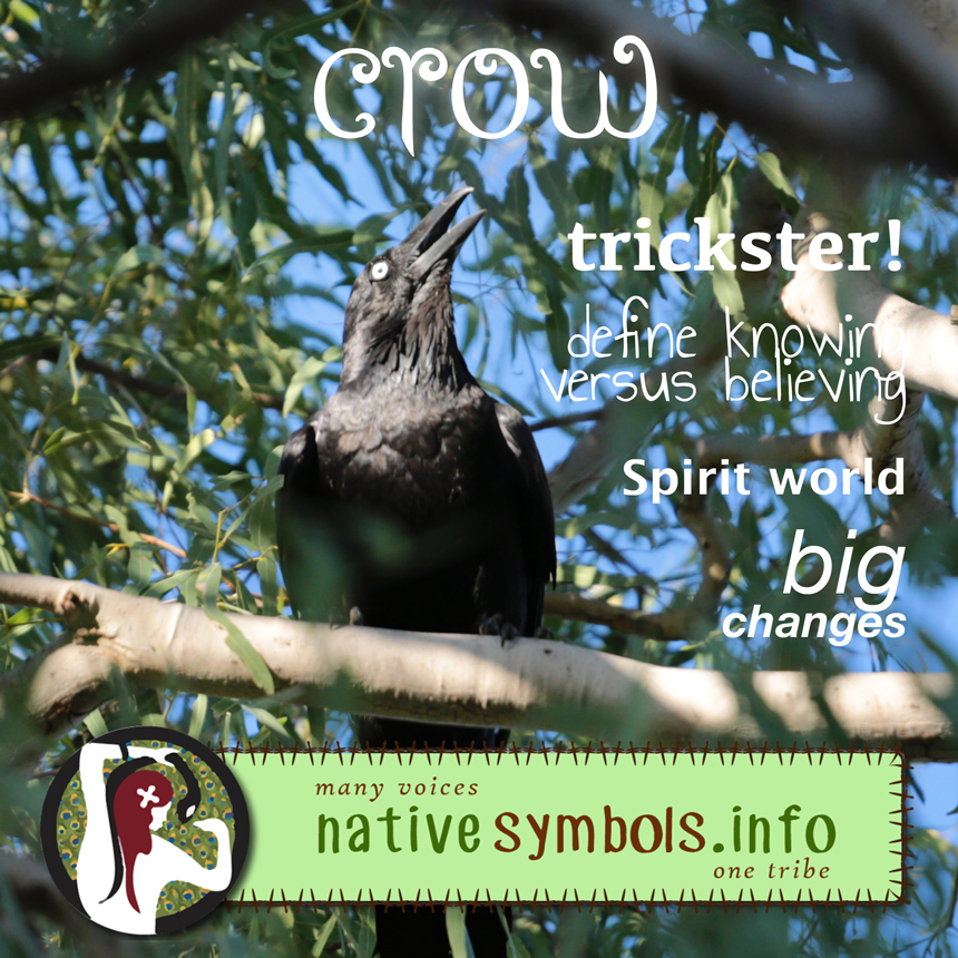 shareable crow pic with meanings as a symbol